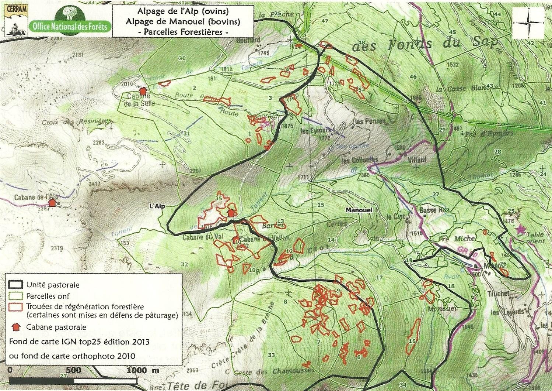 Plan alpage de l'Alp