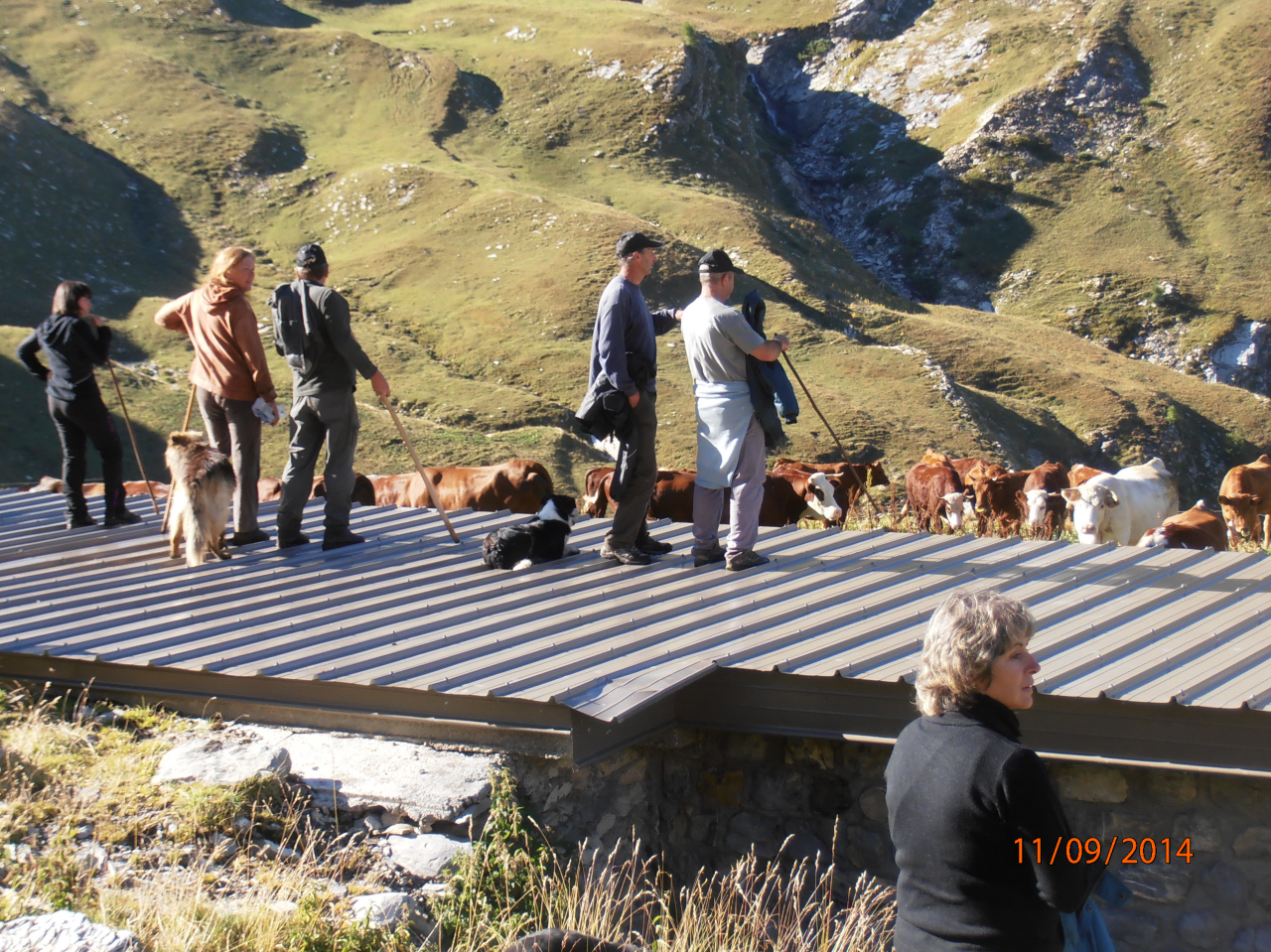 Avec des éleveurs sur le toit de la cabane regardant vers la Selle. (Ph.M.Hagard).
