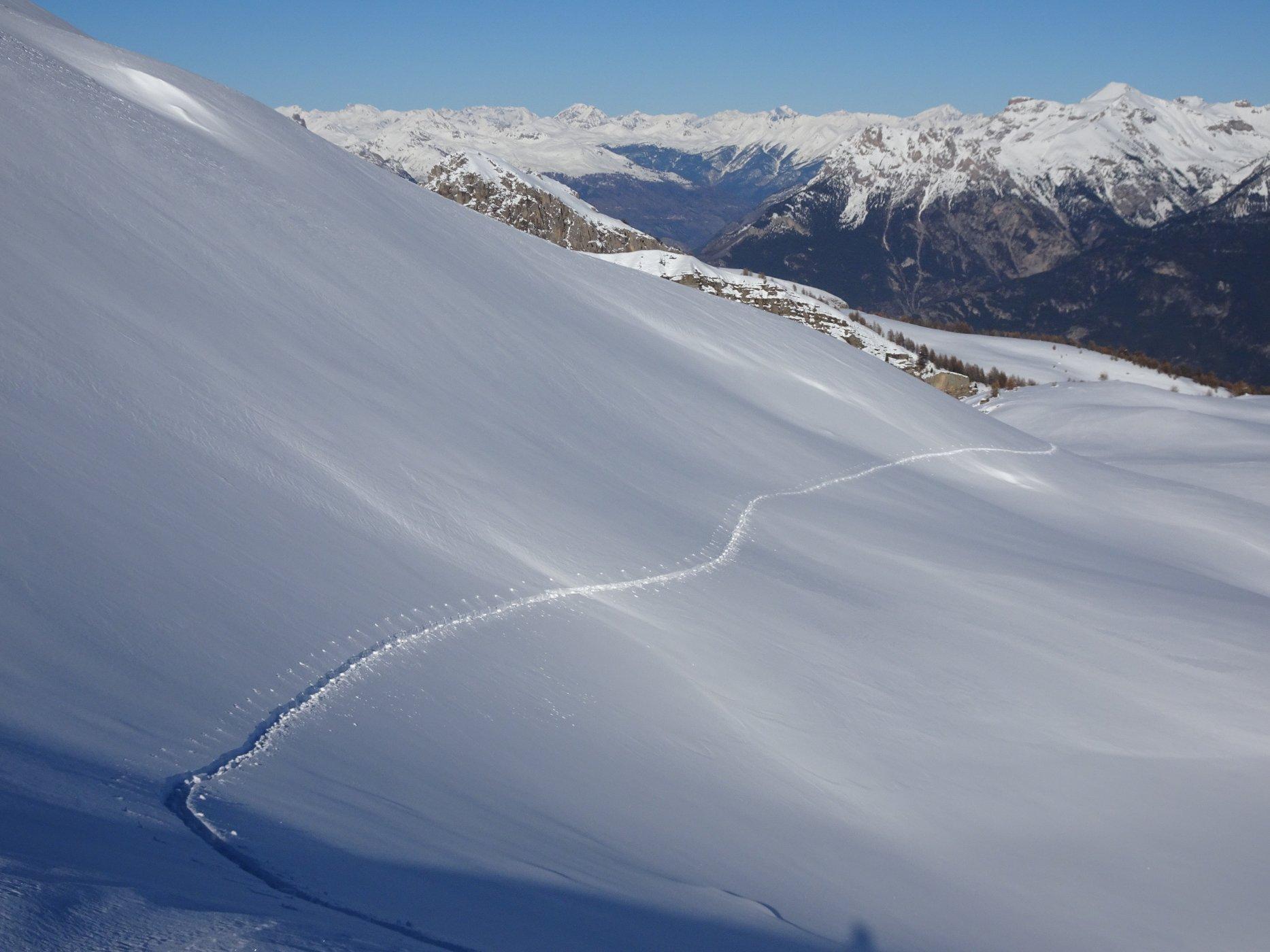 Trace dans la lumière et la solitude des plateaux de l'Alp (automne 2016).